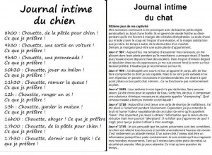 journal-chien-chat